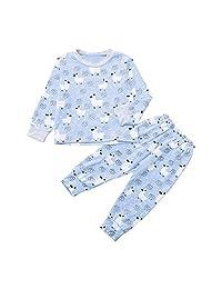 PSFS Newborn Baby Kids Boy Cartoon T Shirt Sweatshirt Tops Pants 2Pcs,Clothes Set