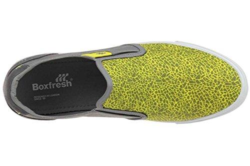 Boxfresh Sanford FM WXD Canvas Sneaker Men Trainers E13165