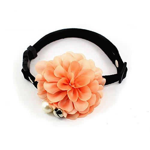 PETFAVORITESTM Designer Wedding Leather Necklace