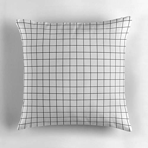 (Rdkekxoel White Window pane printThrow Pillow Cover 18X18 inch Decorative Throw Pillow Case Cushion Cover for Holiday Decoration Home Decor Sofa Living Room Car 45x45cm)