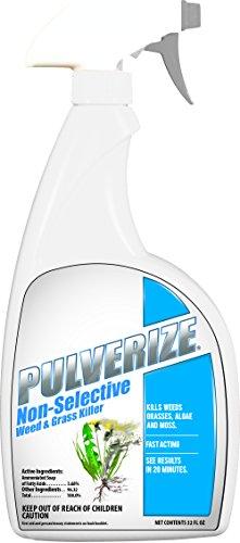 Pulverize Non Selective Weed & Grass Killer Trigger Bottle, 32 (Sheep Sorrel Weed)