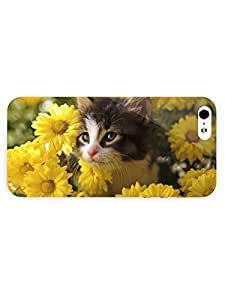 3d Full Wrap Case for iPhone 5/5s Animal Little Cat
