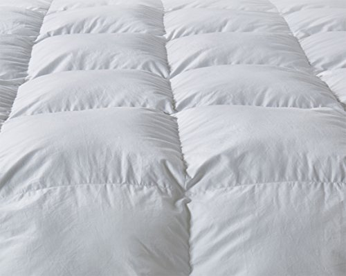 Luxury Twin Size White Goose Down Feather Comforter Duvet Insert 600 Thread Count Hypoallergenic 100% Cotton 600FP,Cozy Down Duvet with 8 Corner Tabs.All Seasons Down Comforter.