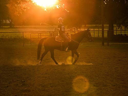 Cowboy Up ()