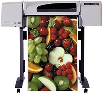 HP Designjet 500 42-in Roll Printer - Impresora de gran formato ...