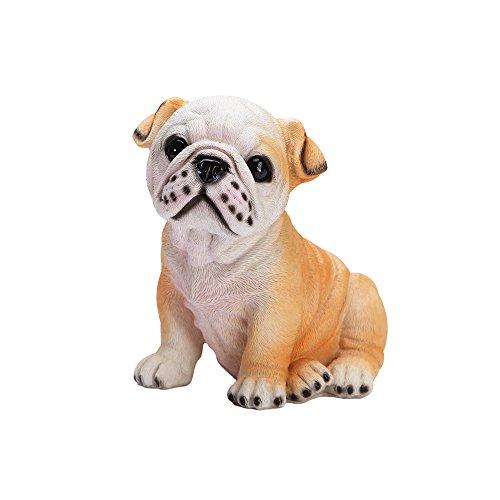 bulldog coin - 4