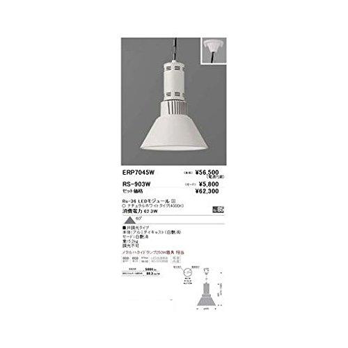 KT22240 ペンダント/チェーン吊型/LED4000K/Rs36 B06XSYXC8V