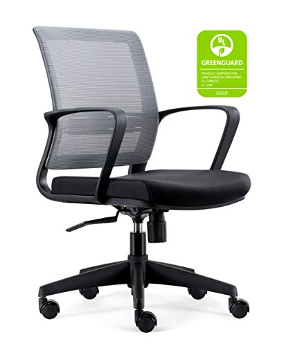 CHAIRLIN Home Office Chairs Mid Back Ergonomic Desk Chair with Lumbar Support Guest Chair Black