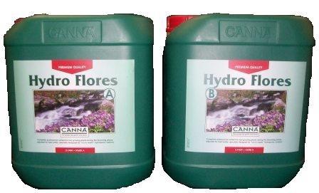 Canna Dünger Hydro Flores A&B Hart 2 x 10 Liter Blüte