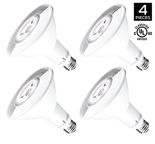 Par38 Led Outdoor Flood Light Bulb - 6