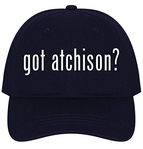 The Town Butler got Atchison? - A Nice Comfortable Adjustable Dad Hat Cap, Navy ()
