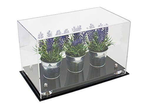 Versatile Deluxe Clear Acrylic Display Case - Medium Rectangle Box with Silver Risers 14