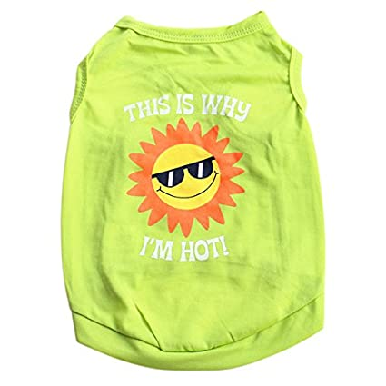 Buy Pinkdosea White S Unisex Dog Clothing Pet Puppy Summer Sun