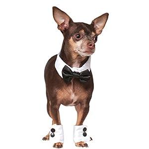 Rubie's Bowtie and Cuff Set Pet Accessories, Small/Medium