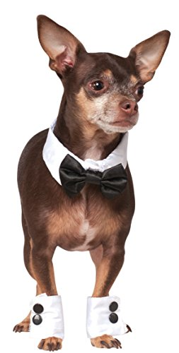 Tuxedo Costumes - Rubies Costume Company Bowtie and Cuff Set Pet Accessories, Small/Medium