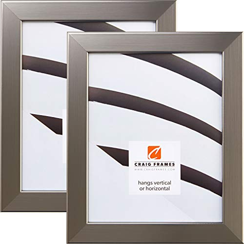 Craig Frames 26966 24 by 36-Inch Picture Frame 2-Piece Set,