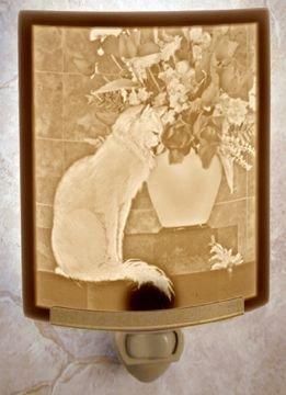 Quot Cat With Flowers Quot Fine Porcelain Lithophane Curved