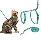 PUPTECK Cat Harness with Leash Set - Adjustable Soft Strap with Fashion Design