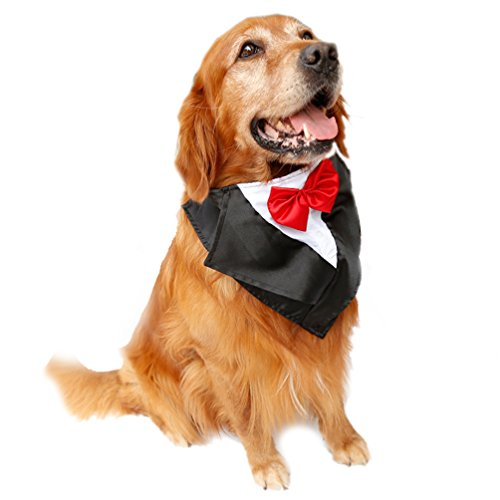 SGODA Dog Wedding Tuxedo Large Dog Bandana with Red Bow Tie by SGODA