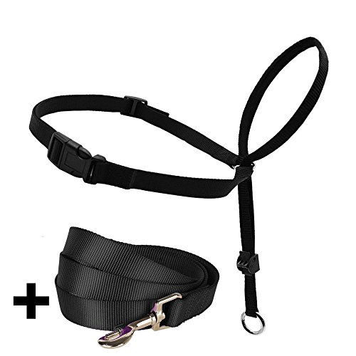 Barkless Dog Head Collar, Adjustable and Padded, No-Pull Training Tool for Dogs on Walks, Includes 1 Dog Leash and Free Training Guide, 3 Sizes Available (L)