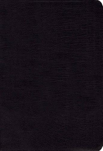 Download NIV Study Bible, Bonded Leather, Black, Red Letter Edition PDF