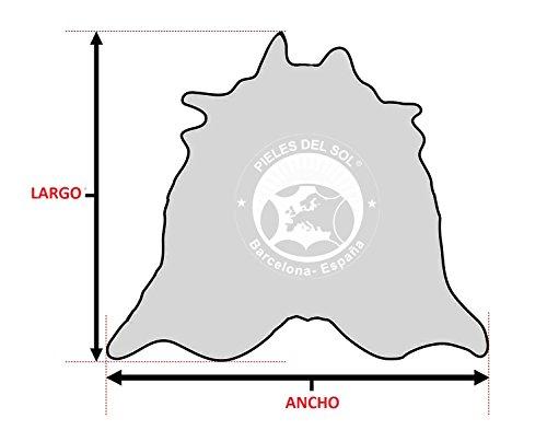 ALFOMBRA DE PIEL DE VACA Tricolor TC5 �?Tamaño: 220 x 200 cm �?Calidad Premium �?100% Natural - Marca PIELES DEL SOL