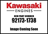 Kawasaki Engine Clamp 92173-1738 New OEM