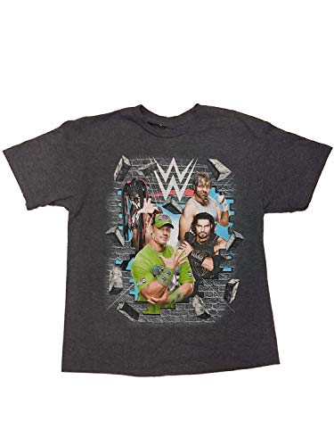 WWE Boys Gray Favorite Wrestlers King Cena Reigns Ambrose All On One T-Shirt L (Wwe Tlc John Cena Vs Wade Barrett)