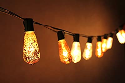 Joyin® 10 Ft Set of 10 Mercury Glass ST40 Edison Style Holiday UL Listed Commercial Quality String Lights for Indoor / Outdoor Use - End-to-end Unique light set has a crackled finish creating the look of mercury glass(Green wire)