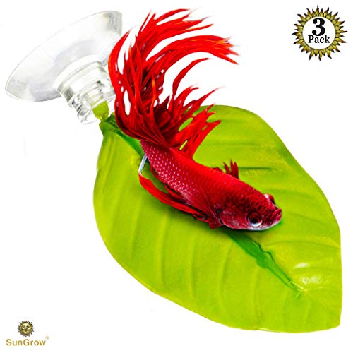 3 Leaf Hammocks for Betta Fish - Lightweight and Realistic Resting Spot (169cm) - BPA-Free, Practical, Dark Green Bed - Comfortable & Safe - Easily Attaches with Included 3 Suction Cup