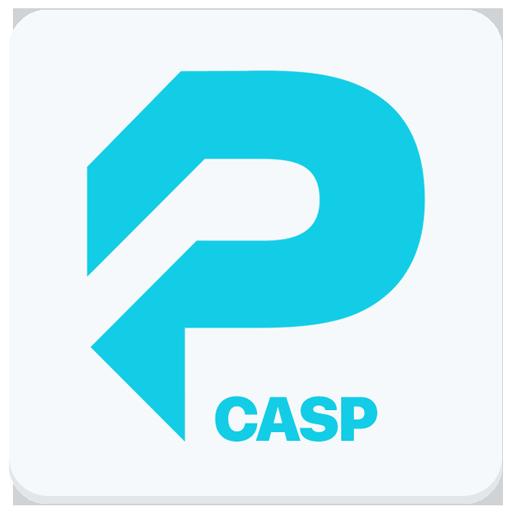 CompTIA CASP Pocket Prep