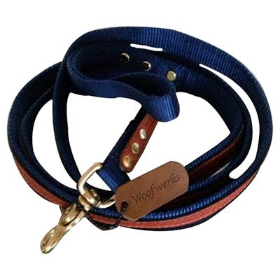Woofwerks Cooper Overlay Leash, 3/4-Inch by 6-Feet, Navy