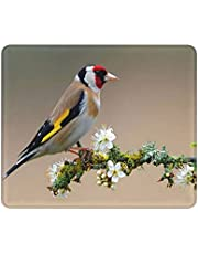 Coseevel Mouse Pad,Bird On Flower Branch Cute Mouse Pad Mat for Laptop Bird Non-Slip Rubber Stitched Edges Working Gaming Mouse Pads for Kidsboysgirlsadults
