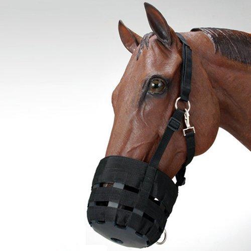 UPC 765839943255, Economy Nylon Halter Grazing Muzzle Pony