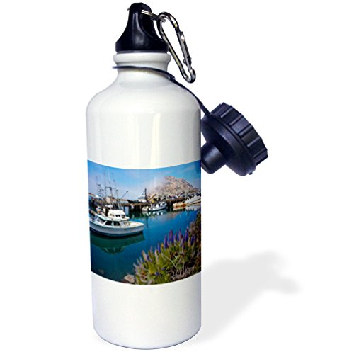 3dRose Use, USA, California. Docked Boats Bay with Morro Rock. -Sports Water Bottle, 21oz (wb_189384_1), Multicolored