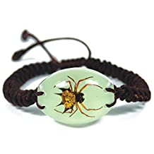 Glow In The Dark Oval Lucite Twisted Band Bracelet w/ REAL Spiny Spider