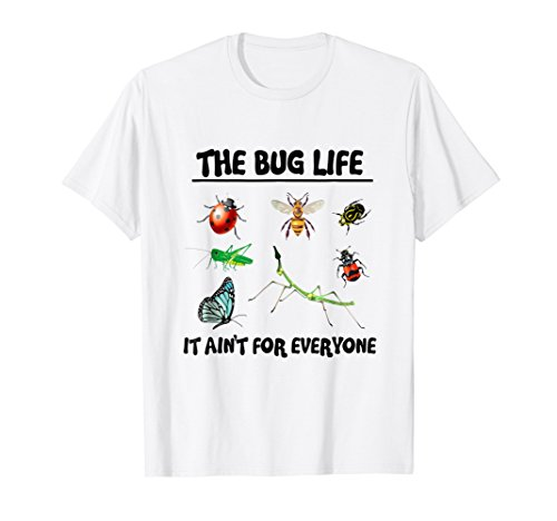 The Bug Life Entomology Insect Creepy Crawler (Fashion Bug Clothing Store)