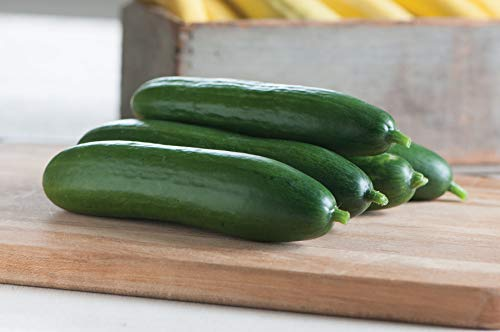 David's Garden Seeds Cucumber Slicing Diva SL2198SV (Green) 50 Non-GMO, Open Pollinated Seeds