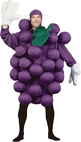 Costumes For All Occasions Pa9500 Grapes Purple Adult Costume