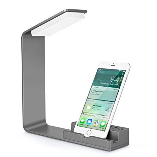 Seenda LED Desk Lamp, Eye-Caring Bedside Lamp, Desk Lamp with 2 USB Charging Ports, Aluminum Made, Style Office Lamp-Space Gray (Arm Heat Aluminum Lamp)