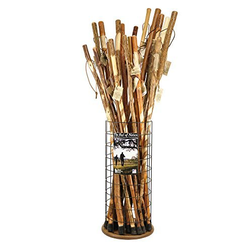 Brazos Wire Grid Cane and Walking Stick Storage and Display Stand by Brazos (Image #1)