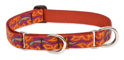 """LupinePet Originals 1"""" Go Go Gecko 15-22"""" Martingale Collar for Medium and Larger Dogs"""