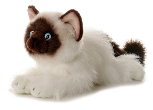 Aurora Bella Himalayan Cat 12-Inch Flopsie Stuffed Animal Aurora Plush 31112