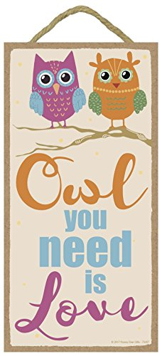 Honey Dew Gifts Wall Hanging Decorative Wood Sign - Owl You Need is Love 5x10 Hang on The Wall Home Decor (Decor Kitchen Owl Colorful)
