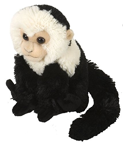 Wild Republic Capuchin Stuffed Animal Plush - Capuchin Monkey