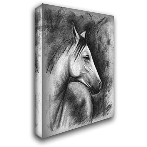 Charcoal Equestrian Portrait I 36x48 Extra Large Gallery Wrapped Stretched Canvas Art by McCavitt, Naomi (Equestrian Portrait)