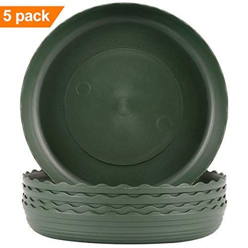 - Plant Saucer 6 inch Drip Trays Green Plastic Tray Saucers Indoor Outdoor Flower Pot Round (6 in x 5 Pack)