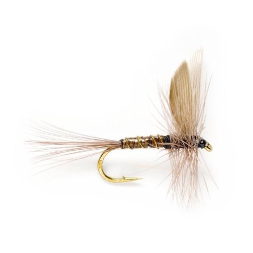 Orvis Blue Quill, 14