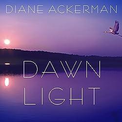 Dawn Light