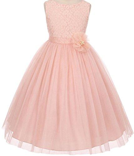 Little Girls Lace Detailing Overlay Tulle Flowers Girls Dresses Blush 2 (Blush Girls)